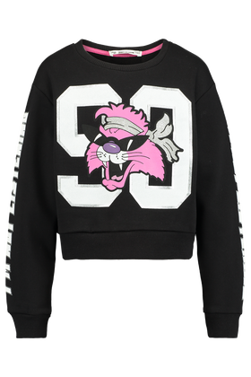 Sweater Dcat